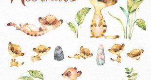 Erdmännchen. Aquarell Tiere Clipart, separate kleine Erdmännchen, Liebe, afrikanischen, Savanne, lädt, Steine, Blumen, Blätter, Babyshower, diy